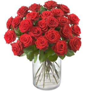 Bouquet of Red Roses Classics